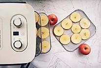 苹果干【摩飞干果机版】的做法