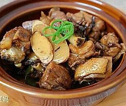厦门姜母鸭#蔚爱边吃边旅行#的做法