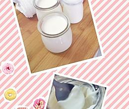 电饭锅自制酸奶思密达~的做法