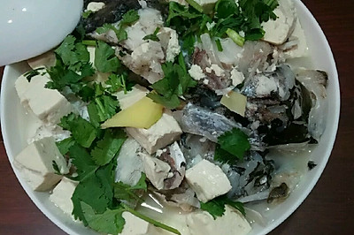 胖头鱼炖豆腐