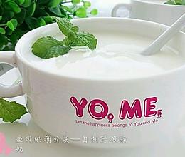 自制特浓酸奶的做法