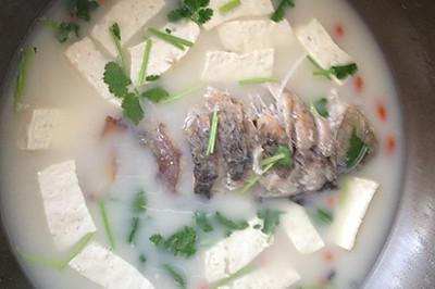 催乳之王鲫鱼豆腐汤