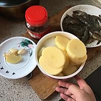 牛蛙煲的做法图解10