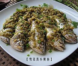 #快手菜#十分钟拿下海边人家最原味的渔家菜【雪菜蒸小黄鱼】的做法