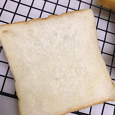 中种奶酪白吐司~ GOURMETmaxx揉大面团记录