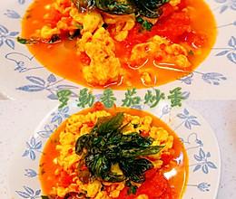 #夏日开胃餐#罗勒番茄炒蛋的做法