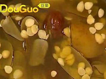 广东糖水~苹果海底椰糖水润肺止咳的做法