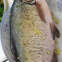 清蒸鳊鱼的做法图解1