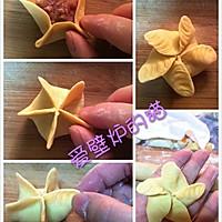 花式饺子--饺子的35种包法的做法图解30