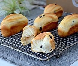 蓝莓牛奶哈斯面包的做法