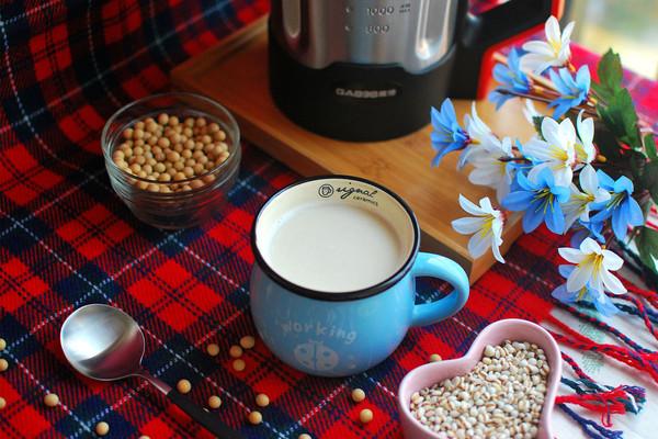 祛湿薏米豆浆的做法
