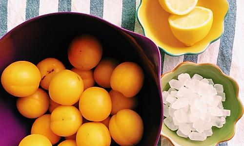 杏酱—最好吃的果酱的做法