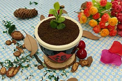 福缸酸奶盆栽