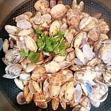 辣蛤蜊(gala)