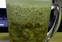 【寝室速成版】绿豆薏米燕麦粥的做法