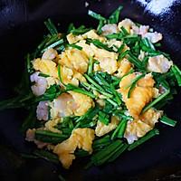 韭菜虾仁炒蛋的做法图解7