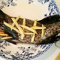 清蒸石斑鱼(适用于各种清蒸鱼)的做法图解6