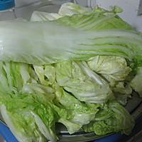 韩式辣白菜的做法图解20