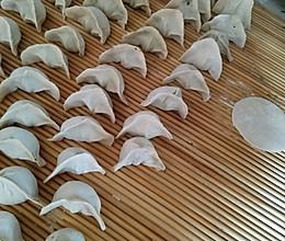 白菜 茴香 韭菜驴肉饺子 简洁版教程。的做法