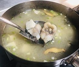 黄骨鱼豆腐汤,纯白鲜美的做法