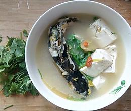 『立秋』清爽减肥食谱之豆腐鱼汤的做法