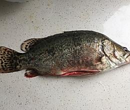 腌制臭鳜鱼的做法