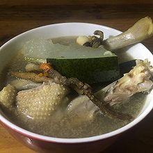 石斛冬瓜老鸭汤