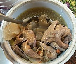 鸽子天麻汤的做法