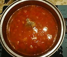 番茄西红柿锅底火锅的做法