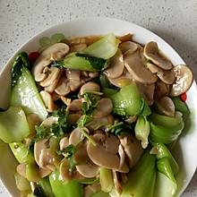 口蘑炒油菜