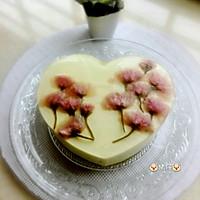 樱花冻芝士蛋糕的做法图解15