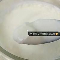免酸奶机做酸奶的做法图解6