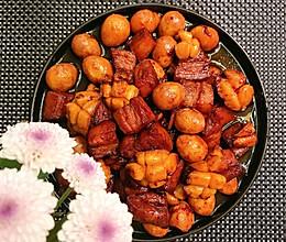 鲍鱼红烧肉-黄磊同款的做法