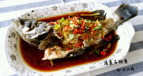 清蒸石斑鱼(适用于各种清蒸鱼)的做法