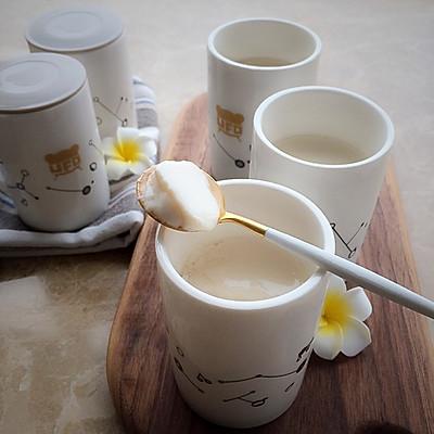 纯素酸豆乳(小熊酸奶机)