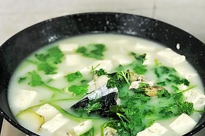 一分钟学会:香菜鱼头豆腐汤(附皎白汤底做法)