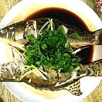 清蒸鳜鱼、小鲤鱼的做法图解8