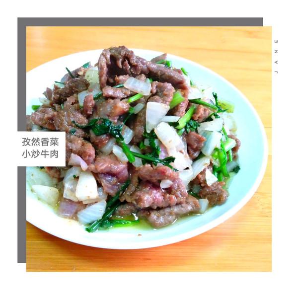 【孜然香菜小炒牛肉】的做法