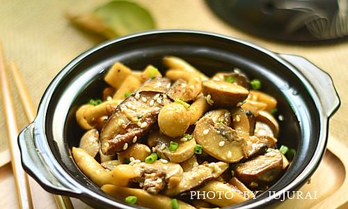 孜然菌菇煲的做法