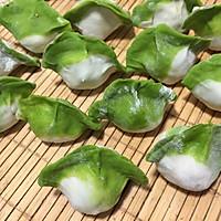 翡翠白菜-------新年饺子的做法图解6