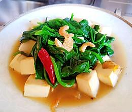 十全大补钙!就是小菠菜炖豆腐~的做法
