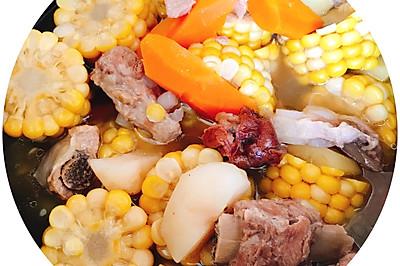 排骨玉米荸荠胡萝卜汤