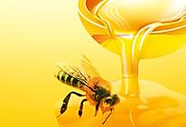 蜂蜜姜茶的做法