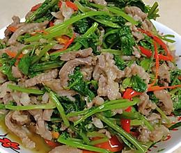 自贡小女人~香菜羊肉的做法