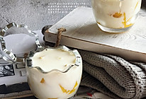 椰奶芒果布丁的做法