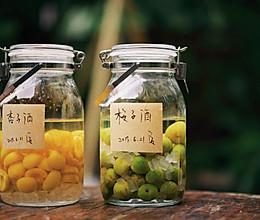 日食记 | 青梅酒×青梅酱的做法
