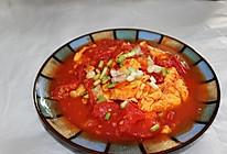 小创新的西红柿炒鸡蛋 番茄加蛋的做法