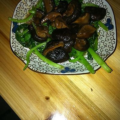 香菇青菜(不一样的香菇青菜)
