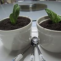 小盆栽的做法图解11