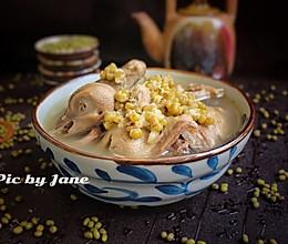 绿豆鸽子汤的做法